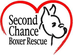 Second Chance Boxer